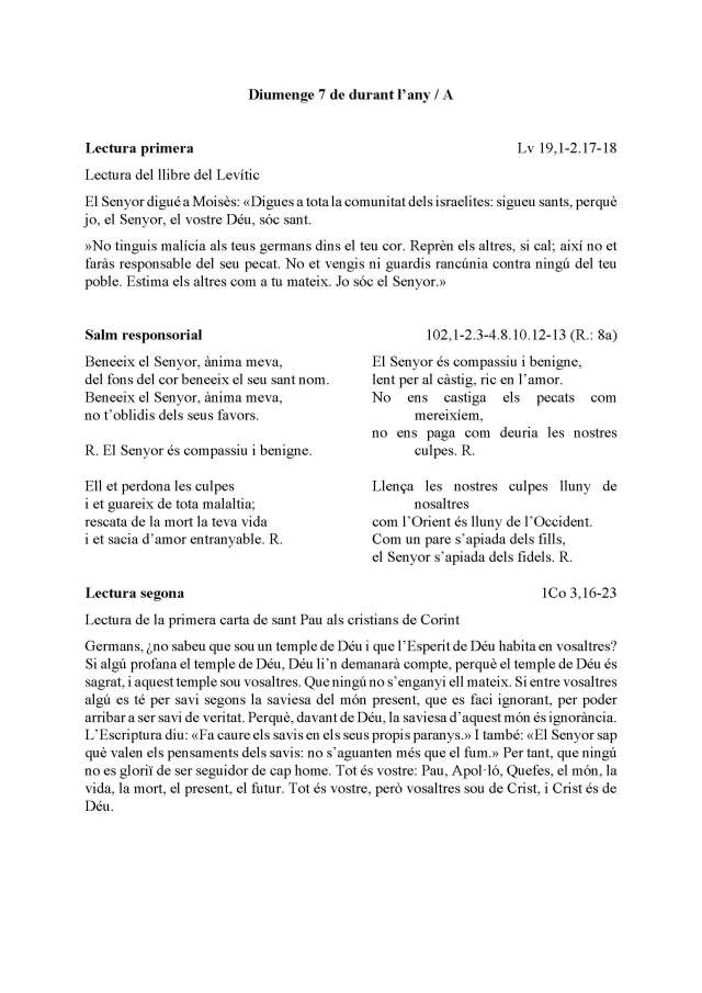 Diumenge 7 A_Página_1